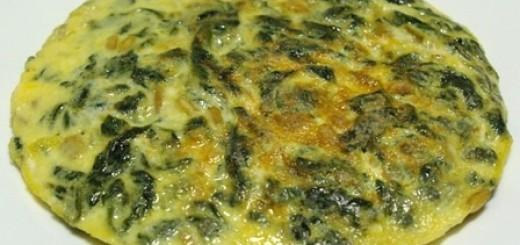 Tortilla algas